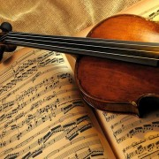 violon-back